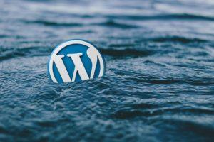 Wordpress Agentur Blog