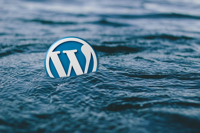 Wordpress Agentur Blog